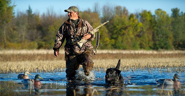 налоговый сбор за охоту и рыбалку
