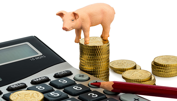 Базовые принципы финансовой грамотности — с чего начать уроки по финансовой грамотности — официальный сервис Checkperson